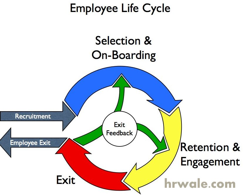 hr functions employee selection The function of the human resources department involves tracking employee  regarding the selection of a hrms  take care of hr functions.